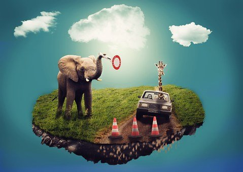 Dream, Surreal, Composition, Elephant