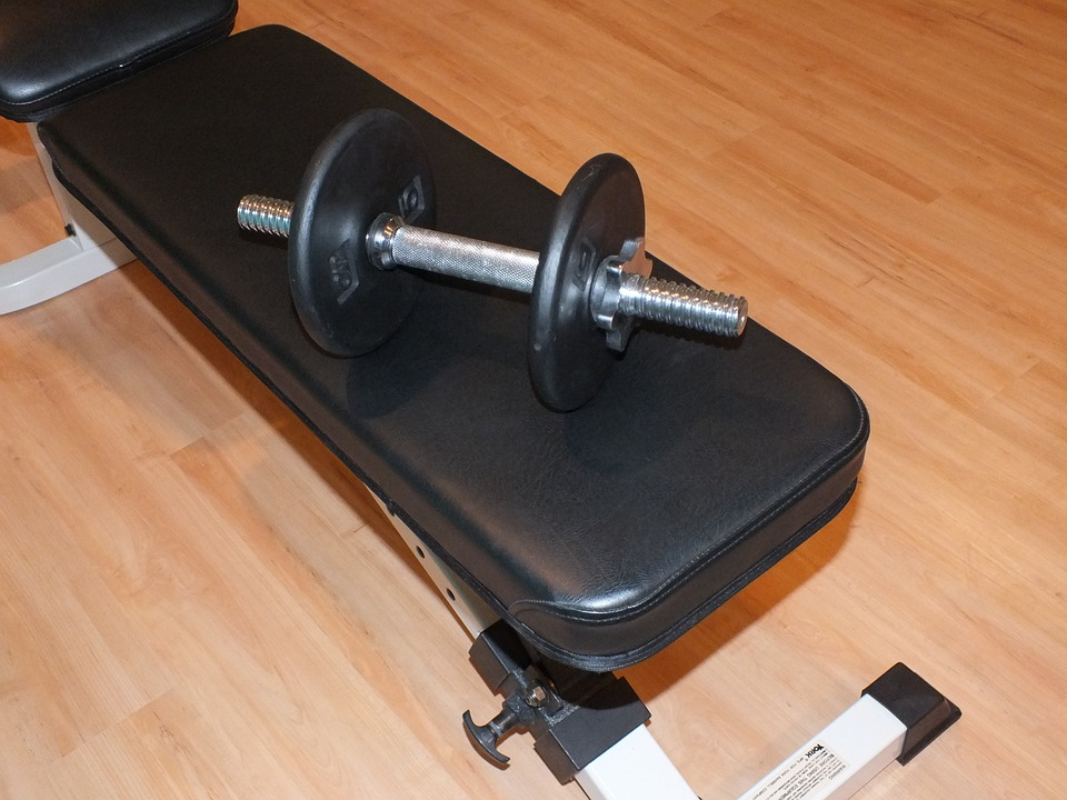 Dumbbell, Dumb-Bell, Bar-Bell, Barbell, Weight, Captainfi, fi, gym, quit gym