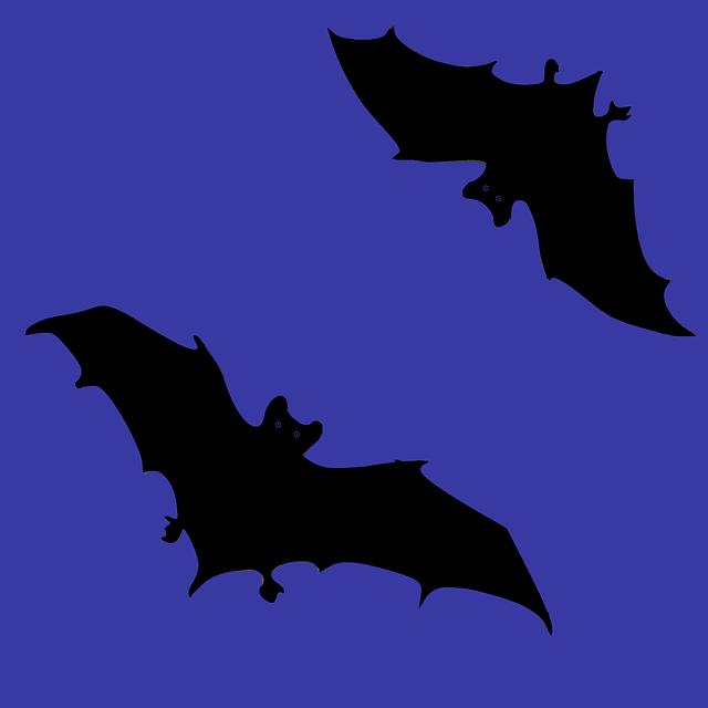 игры летучие мыши картинки представителей