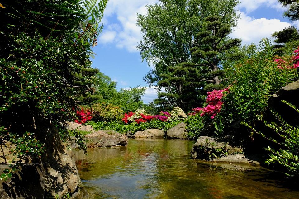 Düsseldorf Japanischer Garten Kostenloses Foto Auf Pixabay