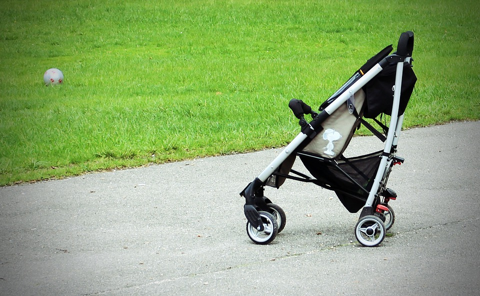For what reason Would it be a good idea for you to Decide on The Best Baby buggy For Felines?