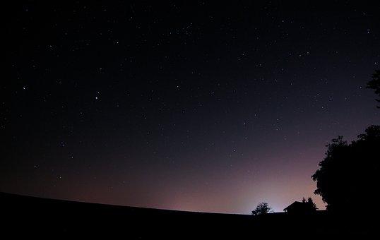 Nacht, Wald, Nachthimmel, Sterne
