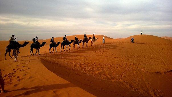 The dunes of mas palomas gran can1 - 5 3