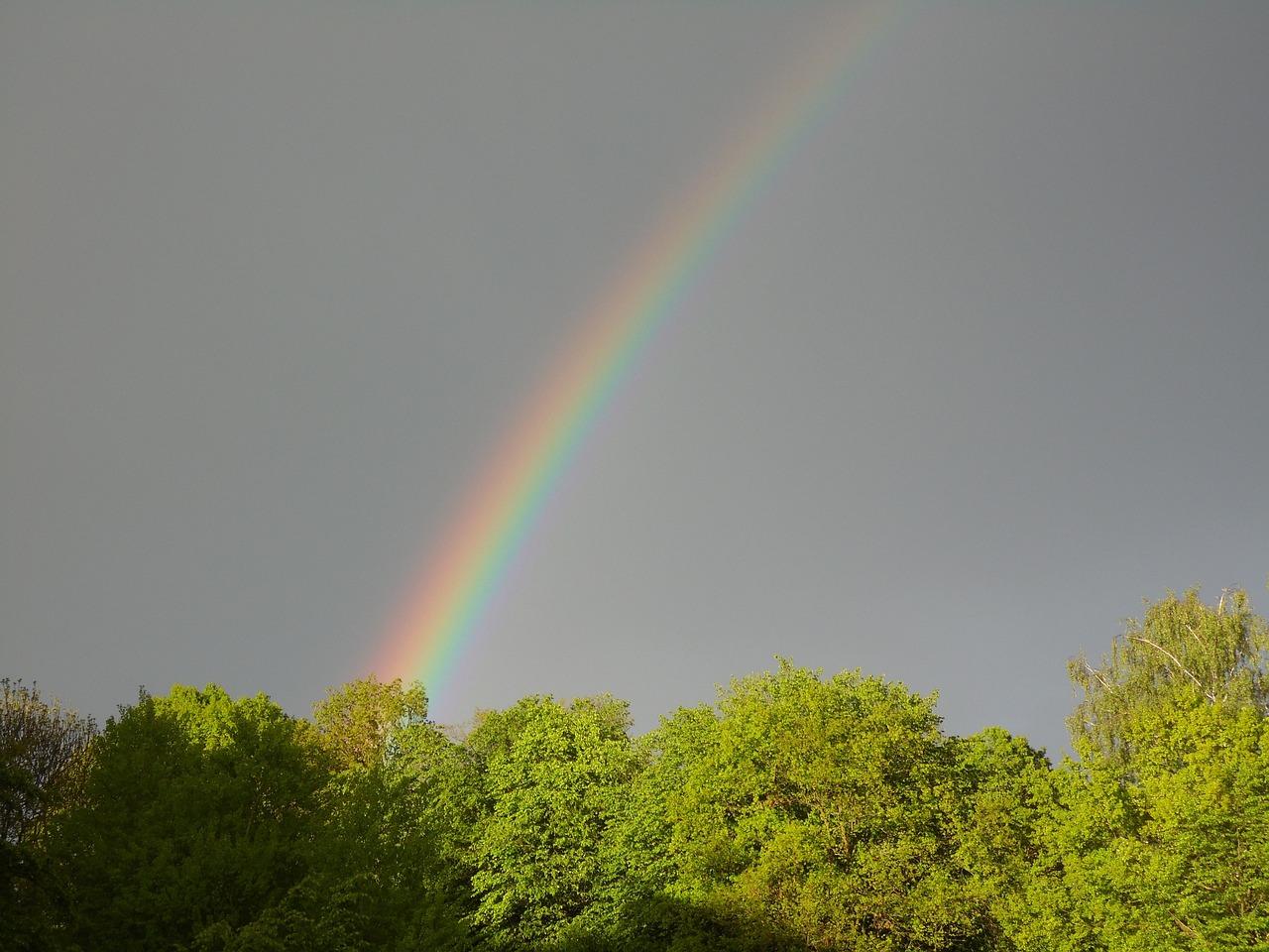 Погода в Саратовской области на сегодня - воскресенье 2 мая 2021 года