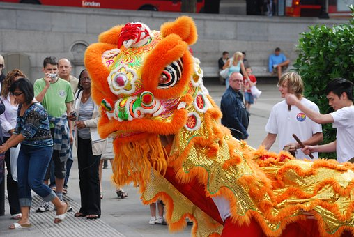 Drache, Chinesisch, Festival, Kostüm