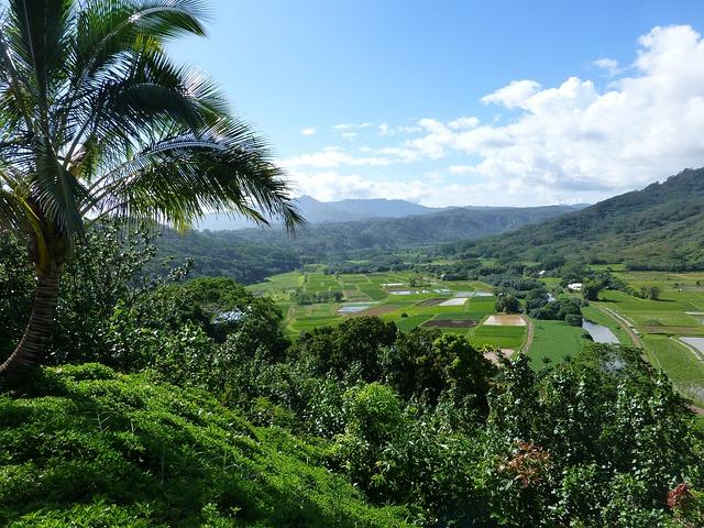 free photo kauai hanalei hawaii farm land free