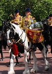 horse, drummer, pageantry