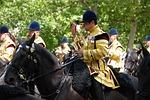 bandsman, musician, horse