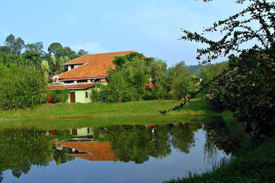 Holiday Home, Resort, Greenery, Pond, Reflection