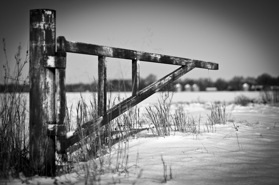 Gerbang Besi Pertanian Foto Gratis Di Pixabay