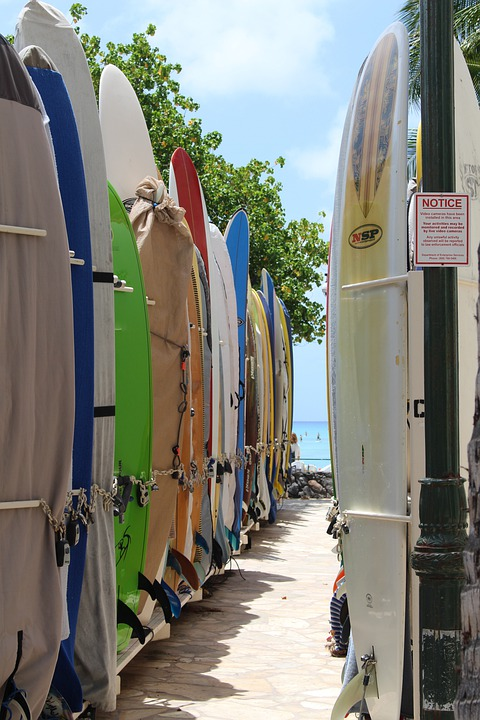 Surfboards, Boards, Beach, Surfboard, Surfer, Sports