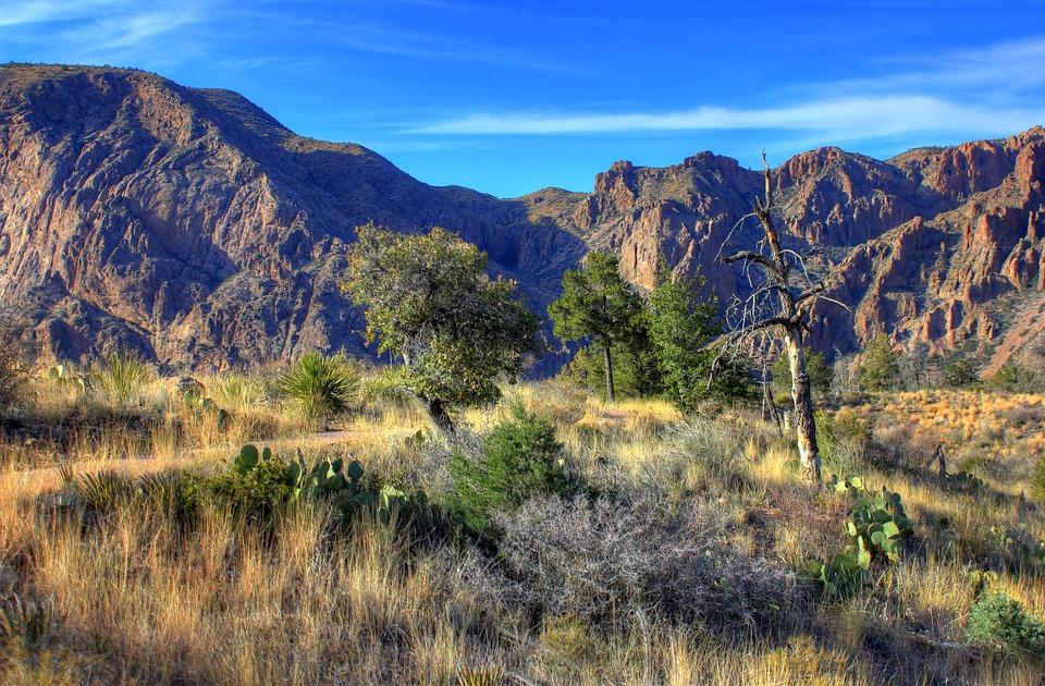 Big Bend National Park Texas Usa · Free photo on Pixabay