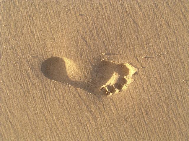 Free Photo Footprint Sand Beach Barefoot Free Image