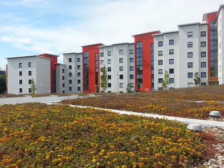 Rehabilitation, New Building, Green Roof