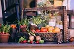 warzywo kosz, kosz z owocami, zbiory