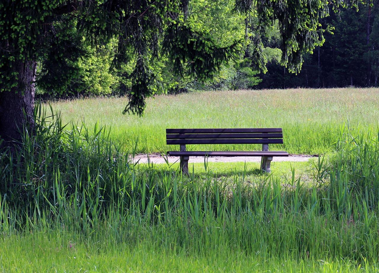 Открытка скамейка, текстом психологические