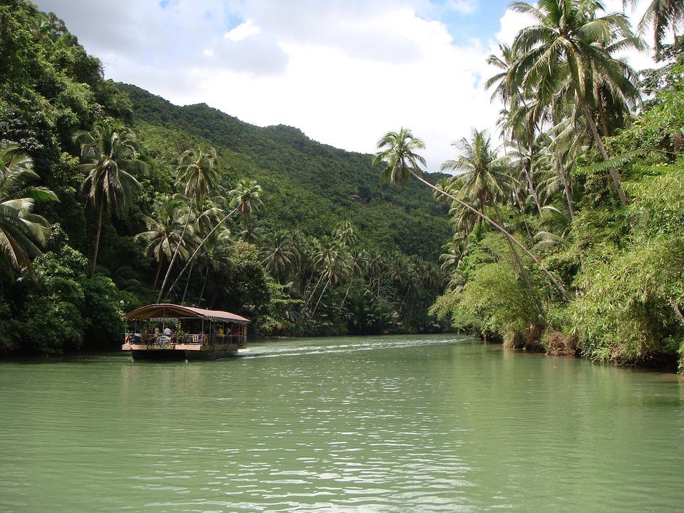 Forêt Tropicale, Bohol, Philippines, Rivière, Bateau
