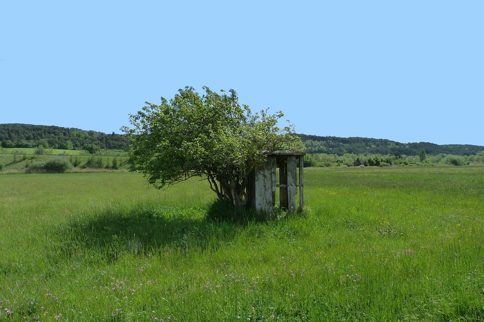 무료 사진: 오두막, 자포자기 한, 풍경, 필드, 나무, 바람, 자연 ...