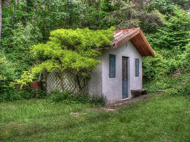 free photo small house vines trees scene free image. Black Bedroom Furniture Sets. Home Design Ideas