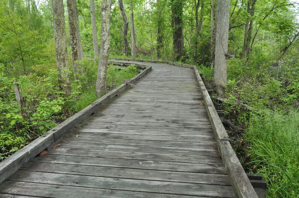 pedestrian bridge wood path free photo on pixabay