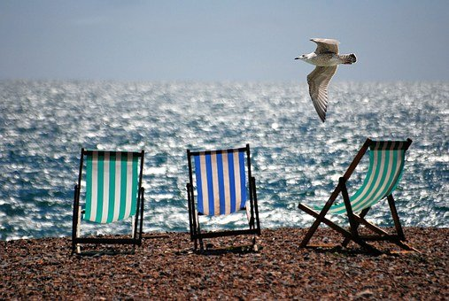 Deckchairs, Sea, Beach, Seaside, Seagull