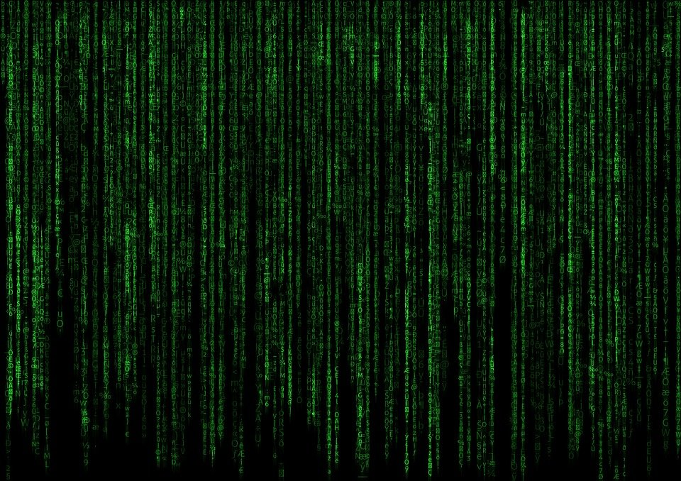 matrix programm