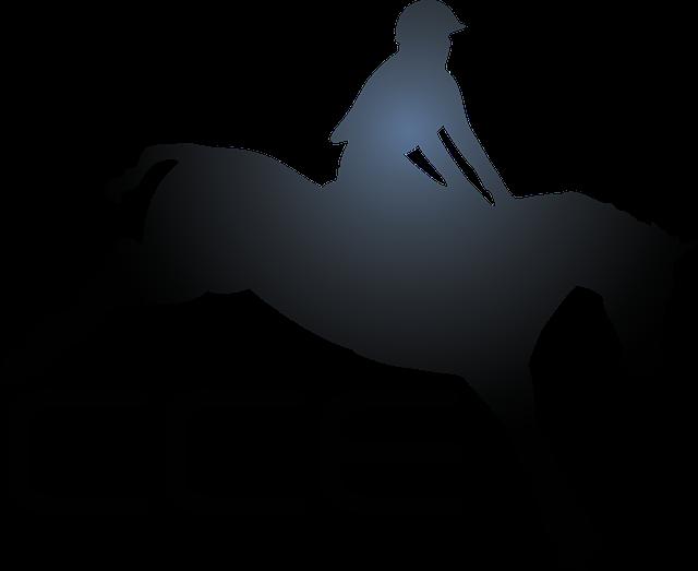 Sport Horseback Riding Horse · Free vector graphic on Pixabay