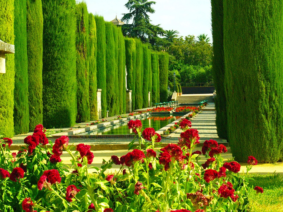 Foto gratis jardines c rdoba vegetaci n imagen gratis for Jardines de gomerez granada