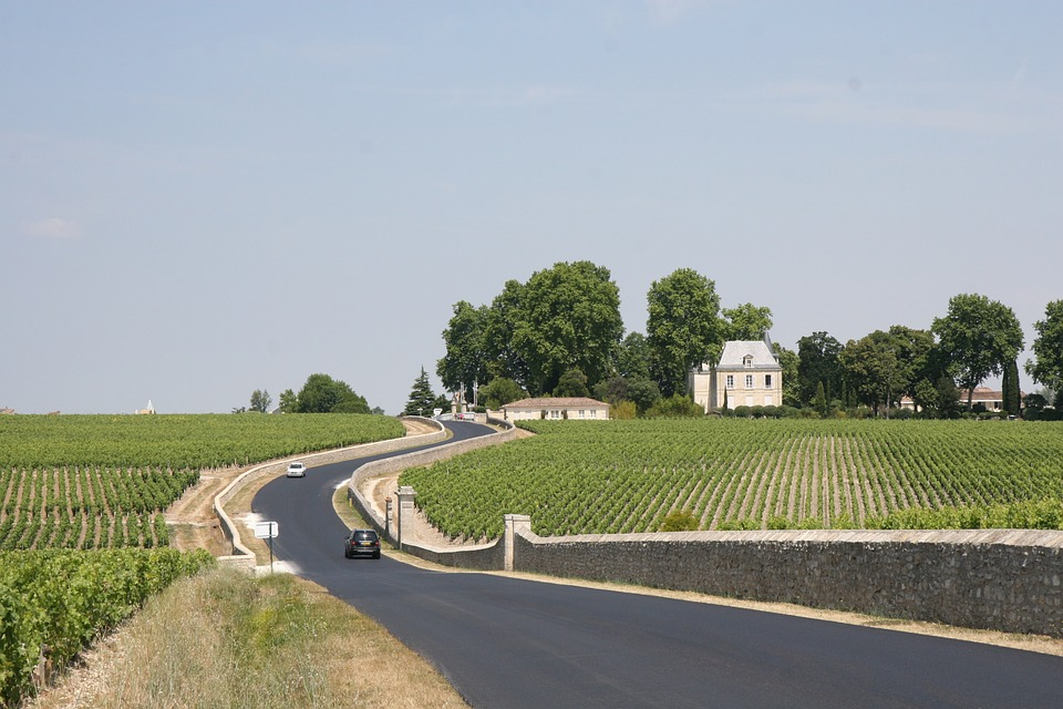 France, Bordeaux, Winery, Vineyard, Countryside