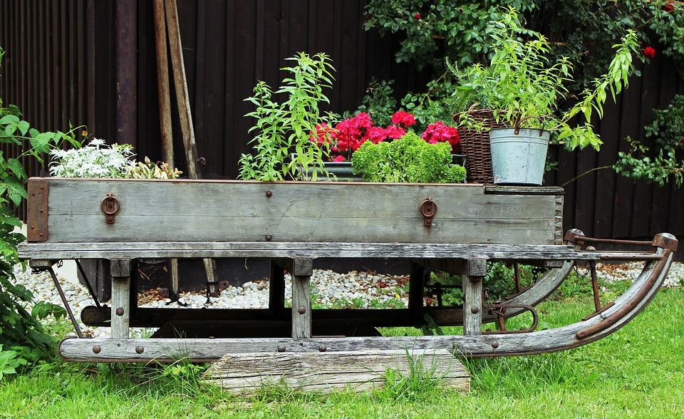Kostenloses foto garten deko schlitten blumen for Pflanzen deko garten