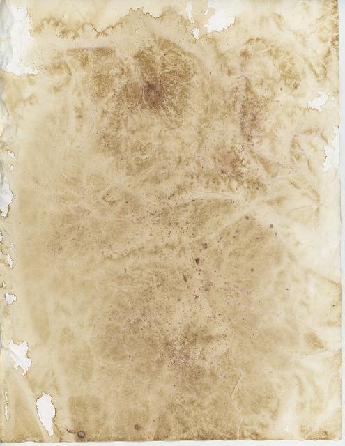 can you write on parchment paper Amazoncom : natural parchment paper - 50 sheets - desktop publishing supplies, inctm brand : decorative computer paper : office products.
