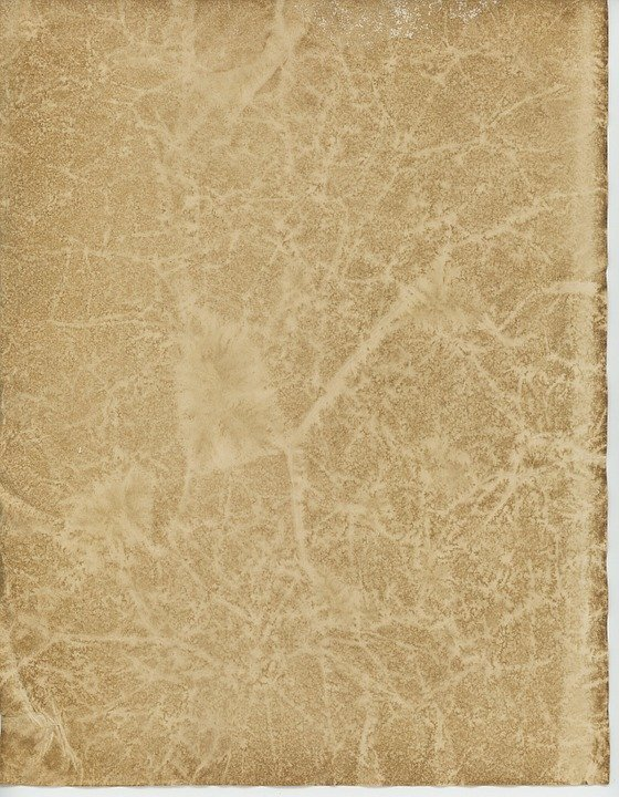 Parchment  Definition of Parchment by MerriamWebster