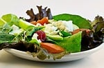 Professional healthy diet  Greeley Colorado