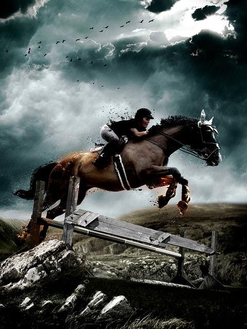 free photo  horse  jump  equestrian  jumping