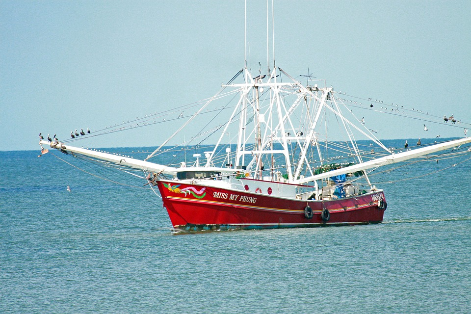 Shrimp Boat, Fishing Boat, Boat, Fishing
