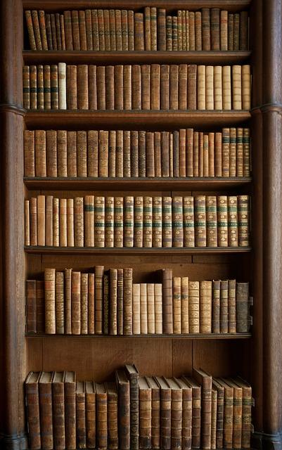photo gratuite livres biblioth que image gratuite sur pixabay 378903. Black Bedroom Furniture Sets. Home Design Ideas