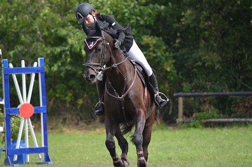 Turnauksen Ride, Ratsastus, Hevonen