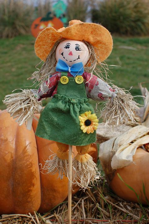 scarecrow pumpkins halloween  u00b7 free photo on pixabay