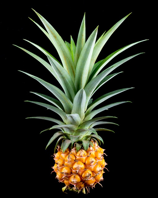 Your Time Is Up Free photo: Pineapple,...