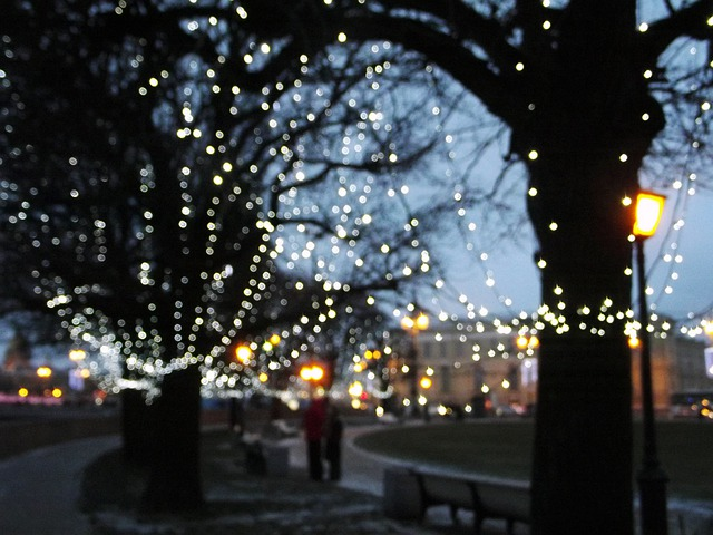 String Of Blue Lights Song : Free photo: City, Lights, Evening, Winter - Free Image on Pixabay - 382148