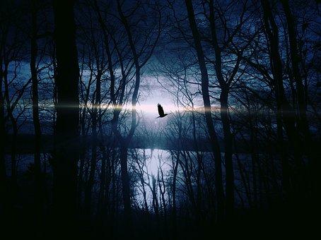 Pták, Podívejte Se, Gespentisch, Noc