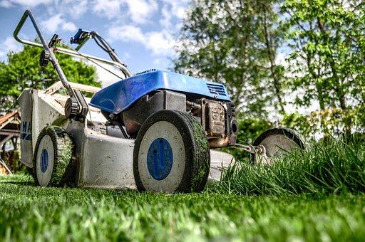 Lawn Mower, Grass, Garden, Front Yard