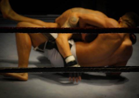 Wrestling Fighting Martial Arts Fighters C
