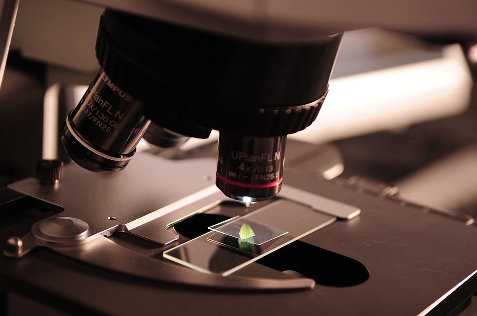 Microscope, Research, Lab, Laboratory, Science