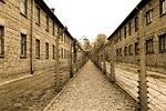 auschwitz, extermination camp, alley