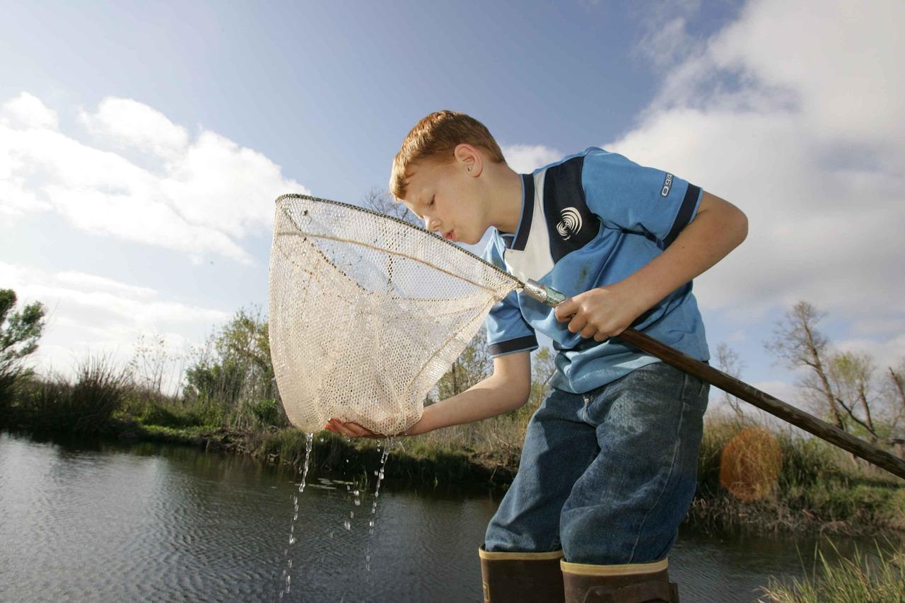 покрытием картинка ловят рыбу система предусматривает, что
