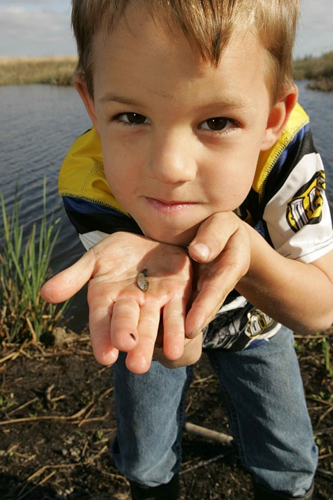 Fish, Small, Holds, Boy, Young, Kids, Children, People