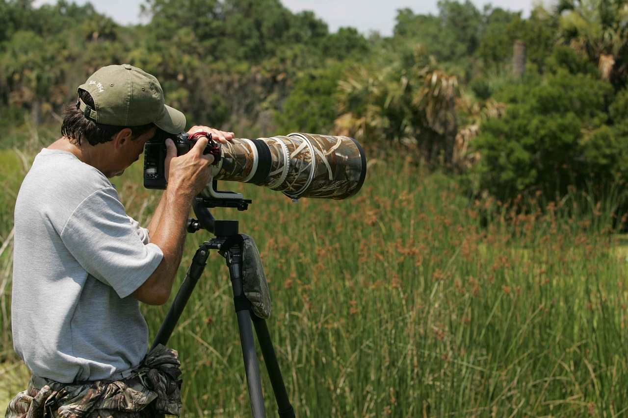 Best tripods for wildlife photography An Overview of the Best Tripods and Heads for Nature