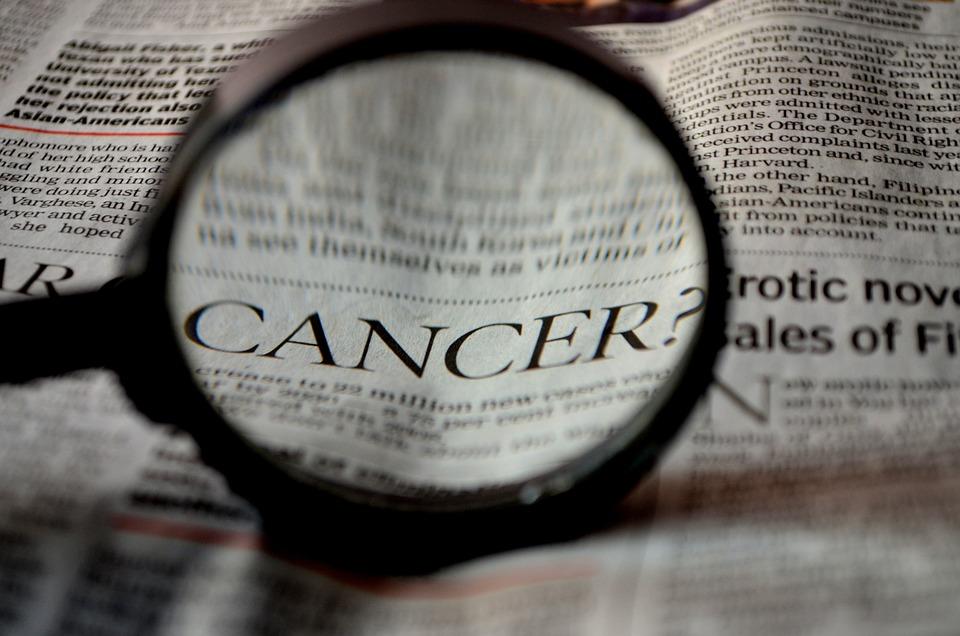 Kræft, Avis, Ord, Lup, Forstørrelsesglas, Læsning, Zoom