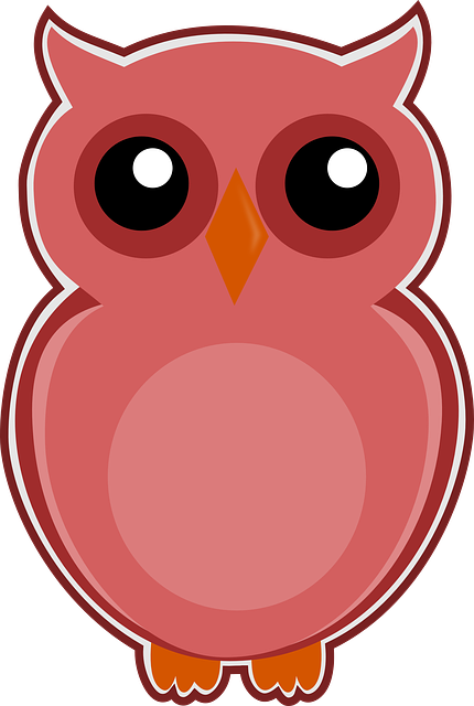 owl pink bird  u00b7 free image on pixabay